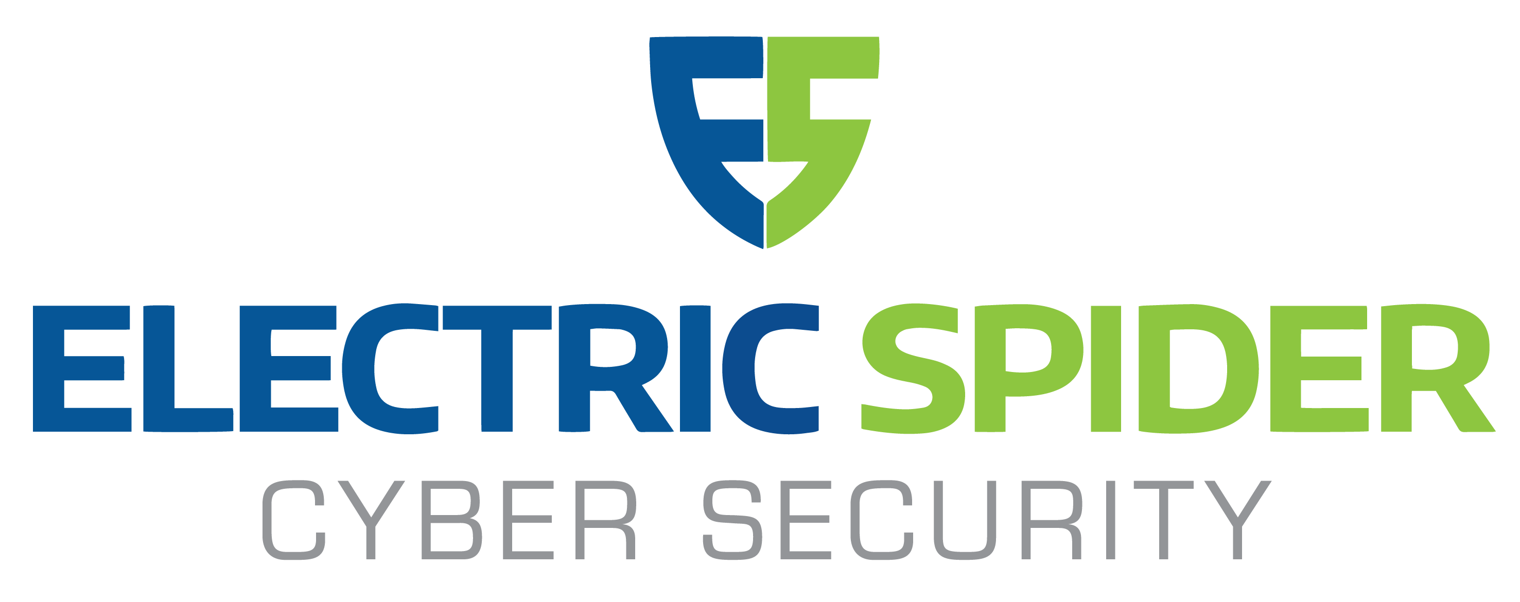 Electric Spider | Data Protection - Cybersecurity